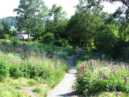 北海道ガーデンめぐりをしてきました~♪_a0243064_15465466.jpg