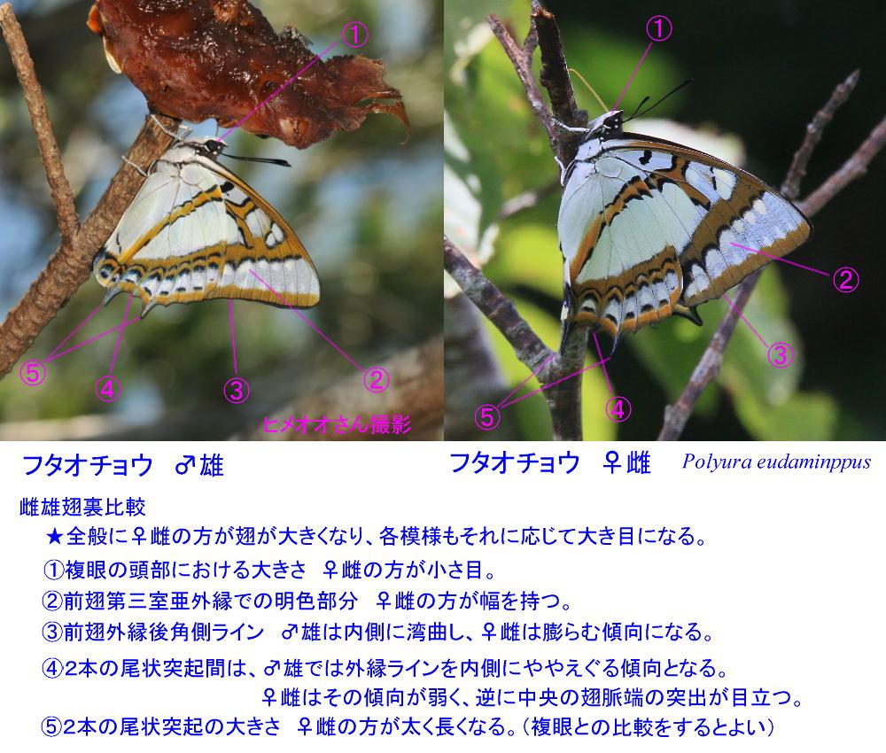 a0146869_1944125.jpg