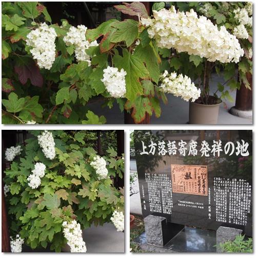 坐摩神社@本町_d0078486_7133887.jpg