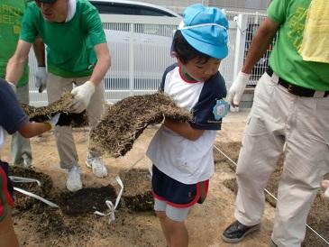 芝生プロジェクト2014  海保_e0149215_14293229.jpg