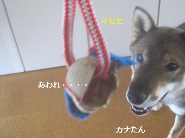 f0143123_16221083.jpg