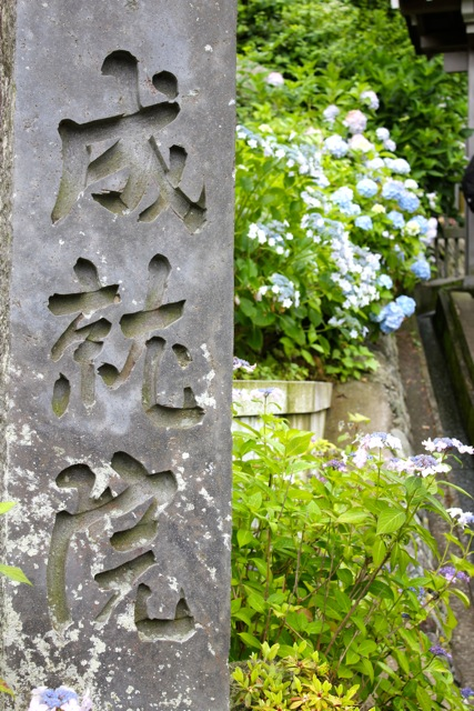 【成就院】鎌倉散策 part 4_f0348831_08083071.jpg
