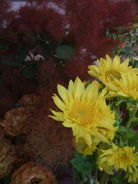 オークリーフ(青木園芸の紫陽花)_f0049672_1449455.jpg