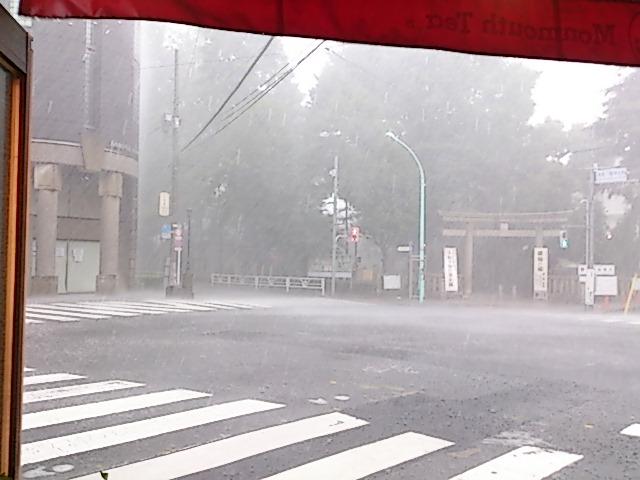 『雷雨』_a0075684_032139.jpg