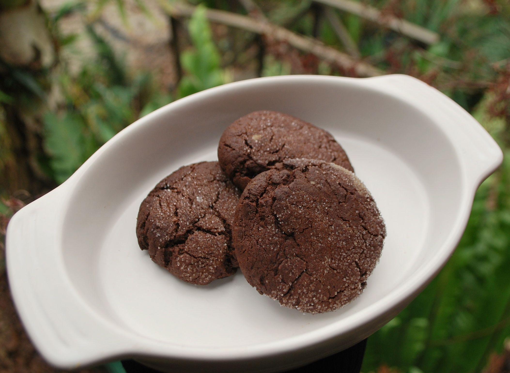 ピーナッツバター・チョコクッキー_f0155522_16413768.jpg
