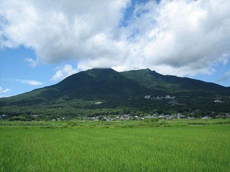 筑波山と紫陽花とセキュリティの変更_b0100229_16311662.jpg
