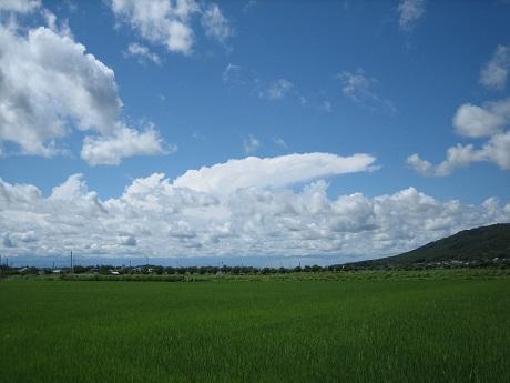 筑波山と紫陽花とセキュリティの変更_b0100229_16313075.jpg