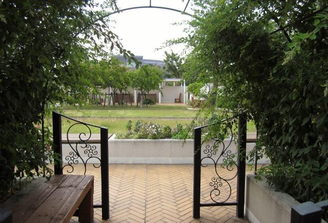 病院の公園散歩          _c0009275_1331567.jpg