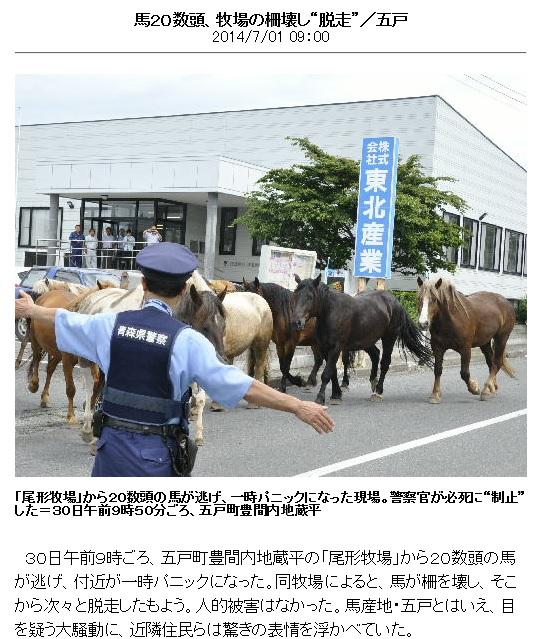馬とヴィジュアル系と一~九戸は元々馬牧場&青森の内緒話_d0061678_14395335.jpg