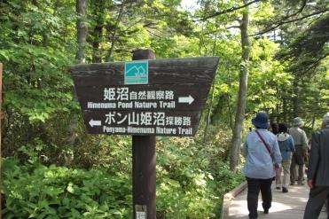 利尻・礼文島へ  ①_b0207284_701321.jpg