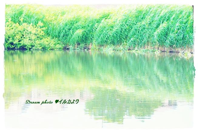 f0304384_21573699.jpg