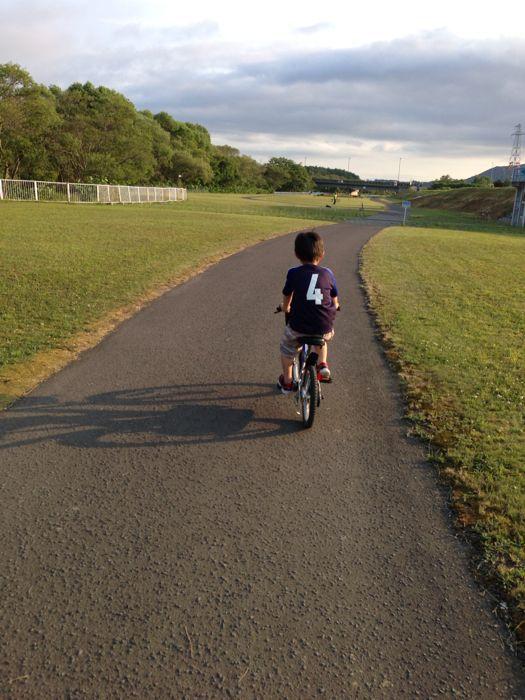 日課の夕方サイクリング_a0071514_757380.jpg