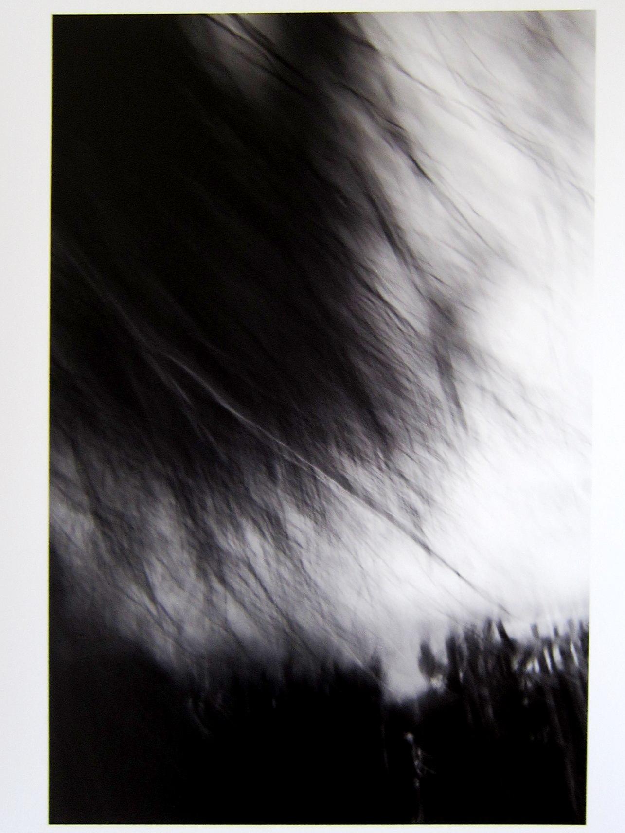 2393)「山岸せいじ展 あわいを覗く」 北広島市・黒い森美術館 終了/4月28.29.30日&5月5.6.7日_f0126829_1726096.jpg