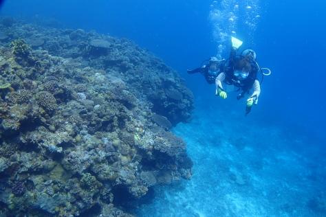 7月1日水納島ダイビング&万座ダイビング_c0070933_22042874.jpg
