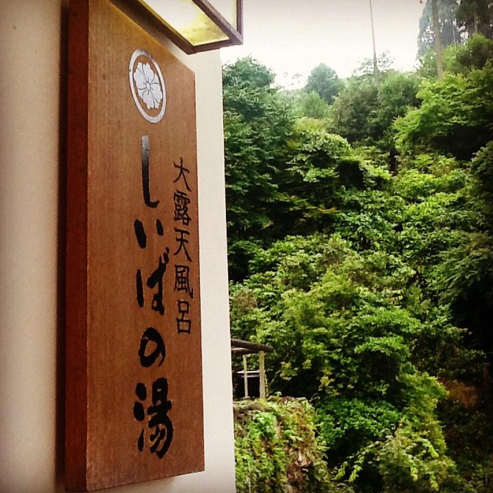 椎葉山荘・しいばの湯_b0125443_21352033.jpg