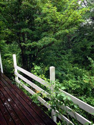 雨の朝、珈琲ゼリー_f0215324_959379.jpg