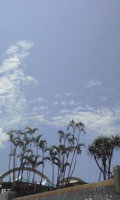 募集) 沖縄パン教室 8月 _d0240469_2075870.jpg