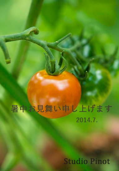 f0032481_2035339.jpg