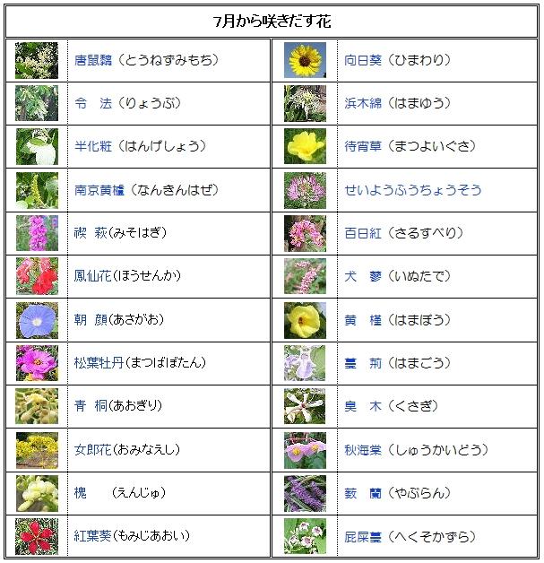 7月のカレンダー_e0128391_7232437.jpg