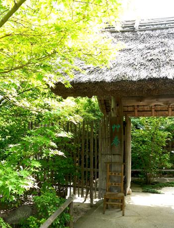 島根・鳥取 2013/湯宿 草庵 1_b0035734_162239.jpg