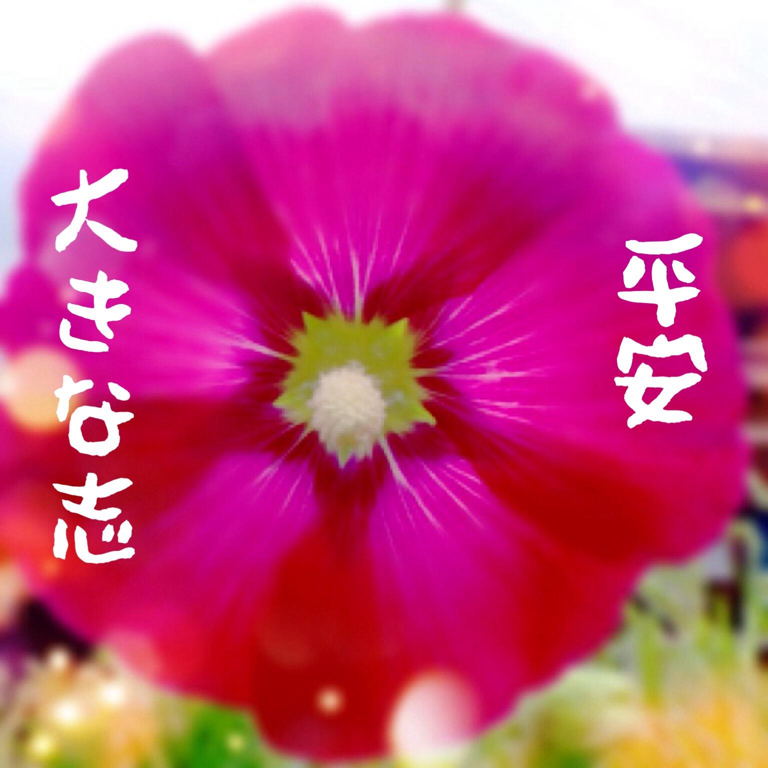 f0183846_11353778.jpg