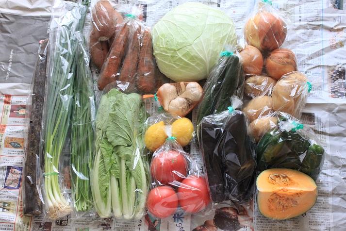 イキイキ果菜館さんの九州・北海道産 農薬を抑えて作られた厳選野菜セット15品再び♪_a0154192_18594745.jpg