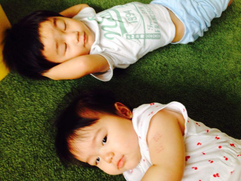シオン2歳10ヶ月になりました_e0253026_742410.jpg