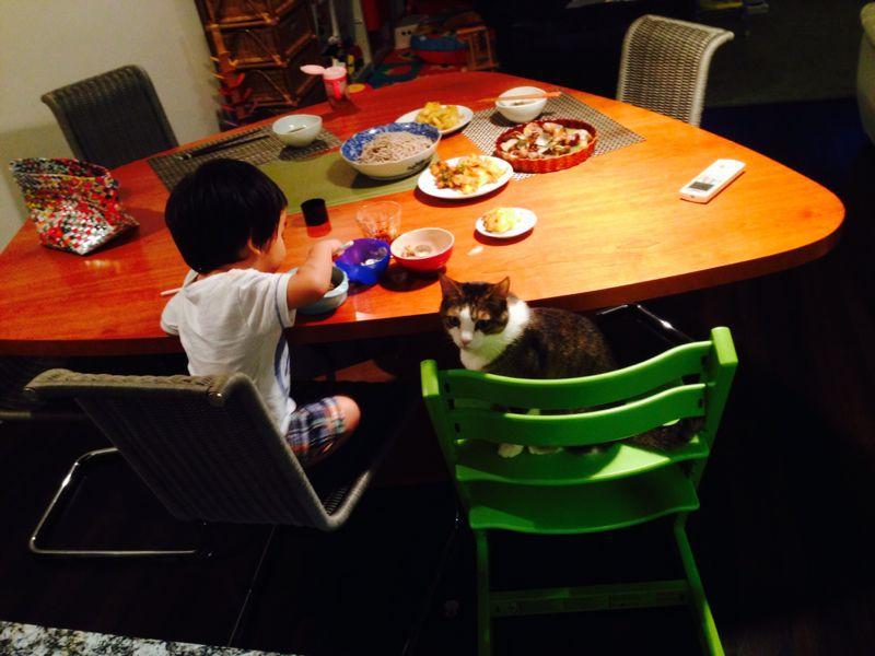 シオン2歳10ヶ月になりました_e0253026_742496.jpg