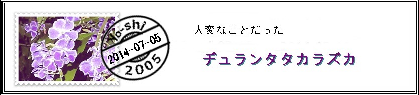e0033229_2141916.jpg