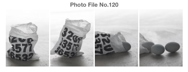 STUDIO M2 PhotoFile No.120 「エロチックなナンセンスフォト」_a0002672_6384565.jpg
