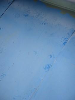 屋根に謎の足跡・・・。_c0223192_18373761.jpg