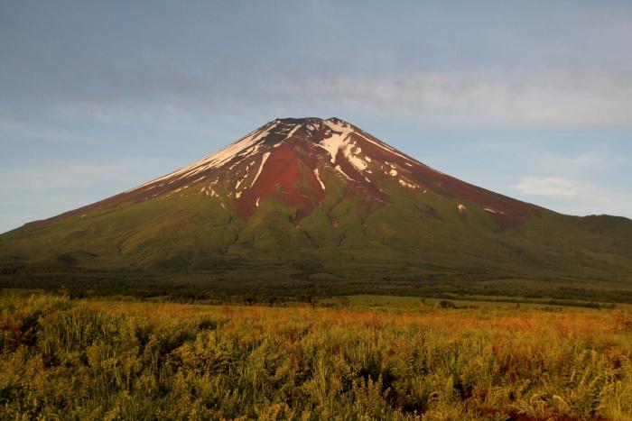 2014.7.6 富士山と野鳥・北富士演習場・ノビタキ、ホオアカ、コムクドリ_c0269342_21094613.jpg