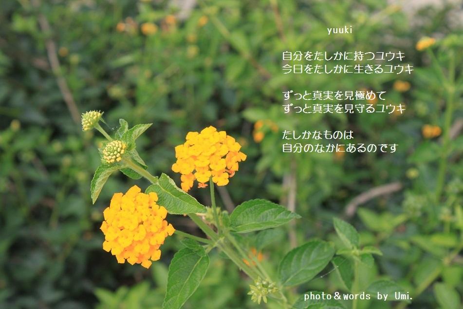 f0351844_12292887.jpg