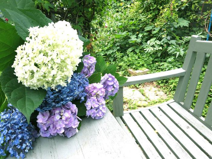 夏の庭_d0129249_19503881.jpg