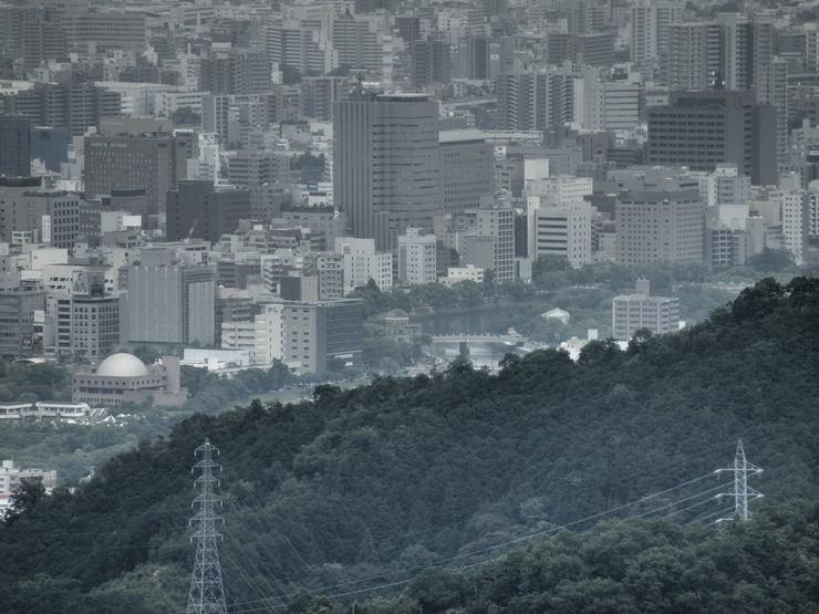 裏山の今_f0219710_774662.jpg