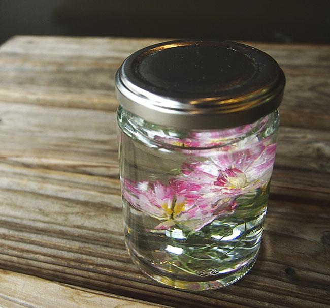水中花の作り方 植物採集シリーズ レンゲソウ_b0292535_15494289.jpg