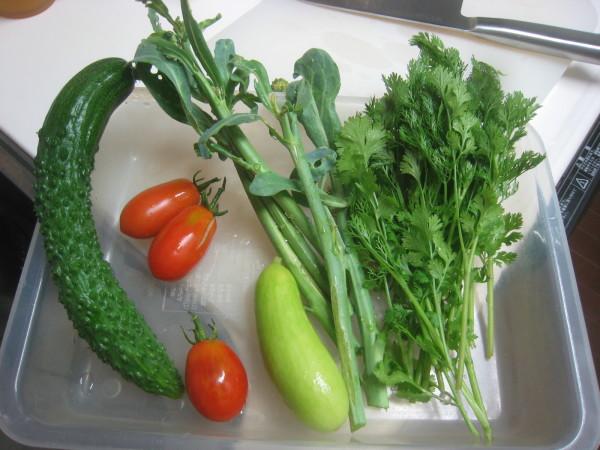 収穫物色々、夕飯も色々_e0121558_22460436.jpg