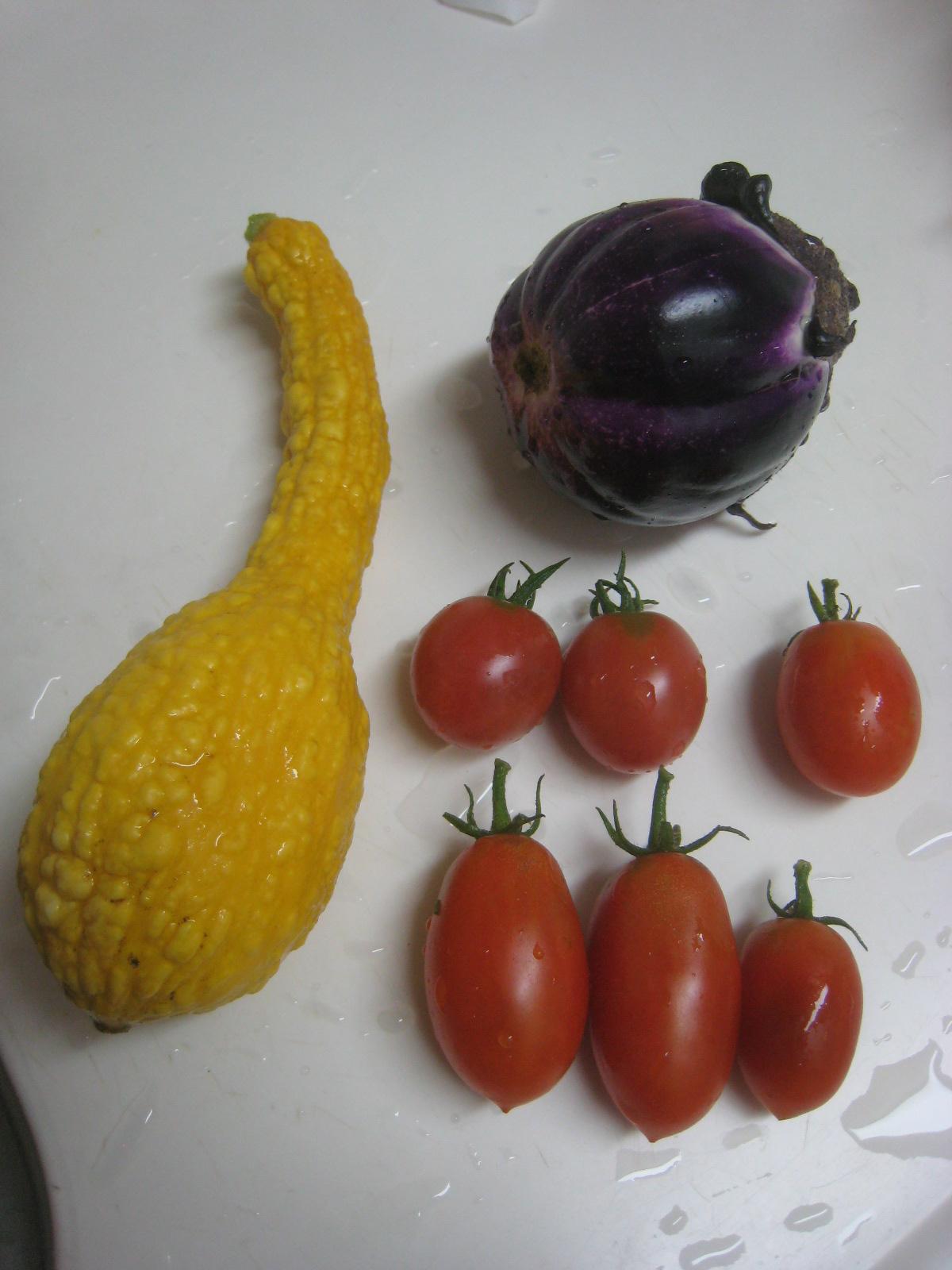 収穫物色々、夕飯も色々_e0121558_22461613.jpg