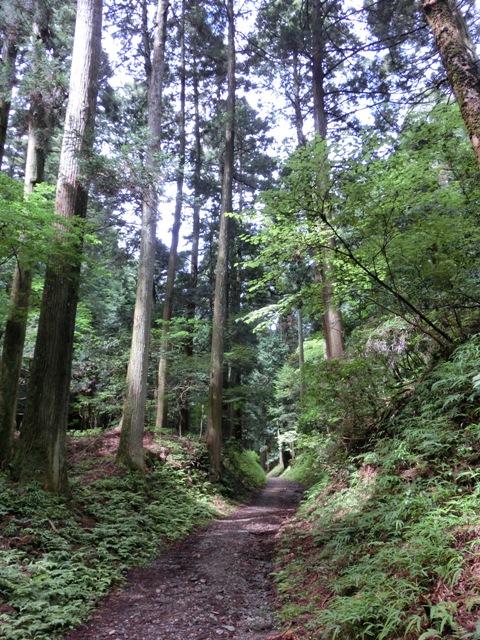 比叡山と三井寺へ_f0178060_23392989.jpg