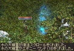 a0201367_204523.jpg