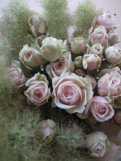 オークリーフ(スモークツリーを入れた花束)_f0049672_1724614.jpg