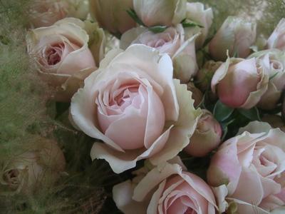 オークリーフ(スモークツリーを入れた花束)_f0049672_172678.jpg