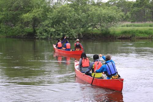 カヌーで湿原どんぶらこ 7月8日_f0113639_175157100.jpg