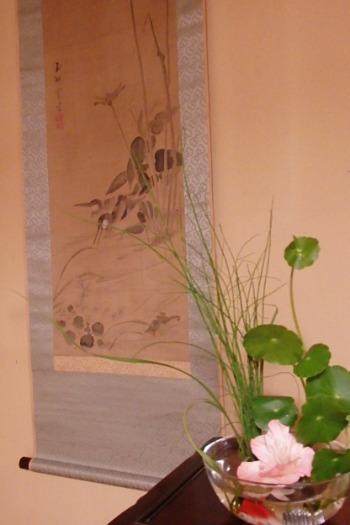 ウォーターコイン の 花 と ..._e0298782_2273762.jpg