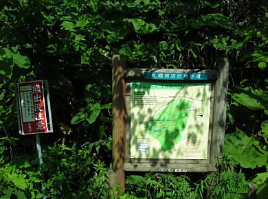 2つの小林峠記念碑_f0078286_100697.jpg