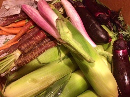 夏の野菜!_e0237660_16145829.jpg