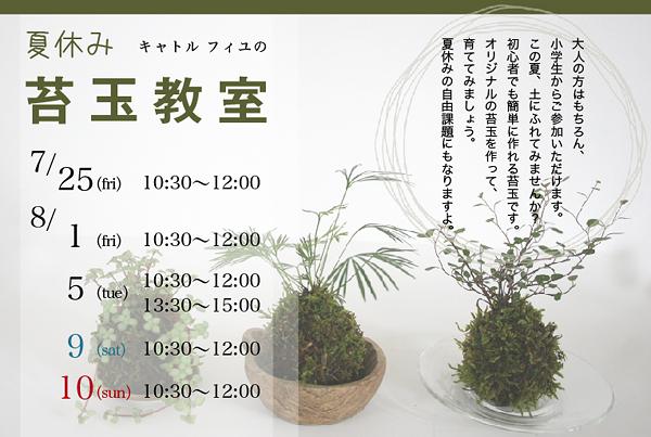 夏休み【苔玉教室】のご案内_c0325871_20355996.jpg
