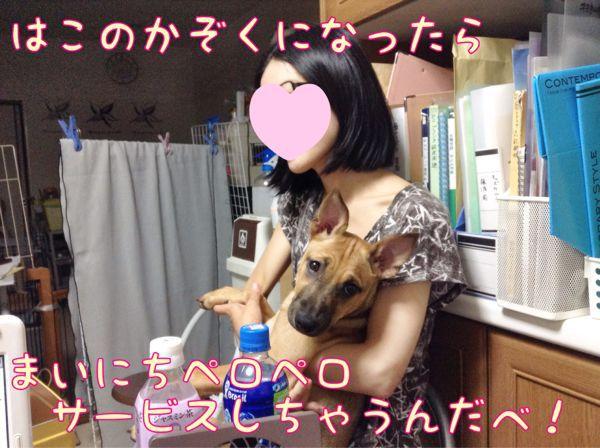 f0329311_1035333.jpg