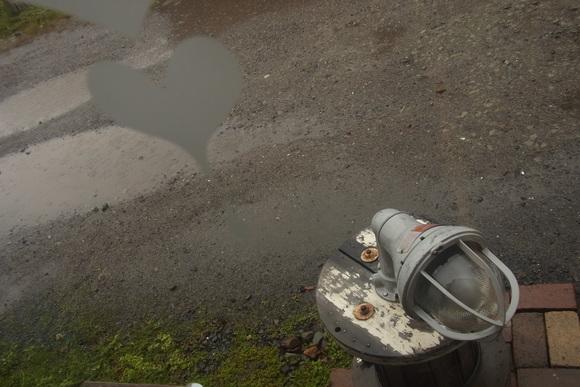 雨漏りミルだけどママと。。。_b0207642_1661388.jpg