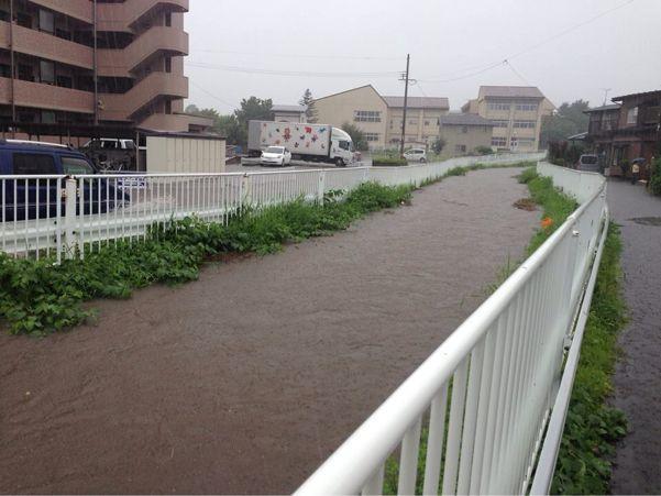 『南川』河川改修状況と自然災害_b0199244_2113246.jpg